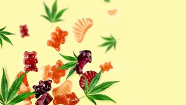 popularity of cbd gummies