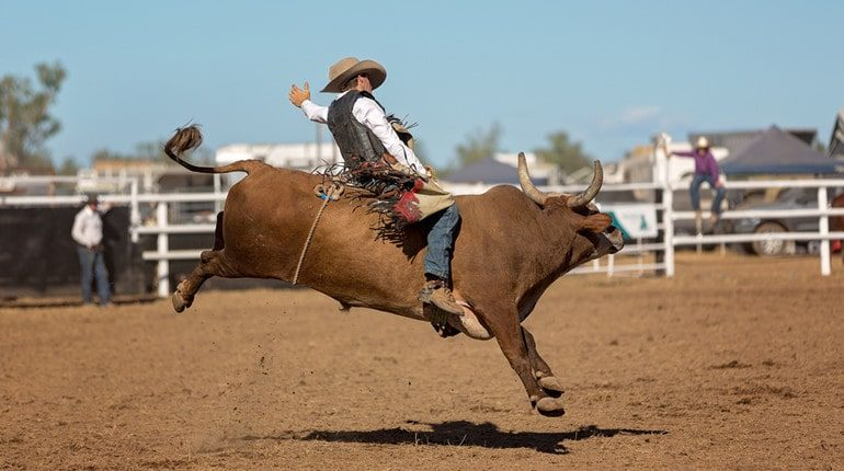 controversy surrounding rodeos