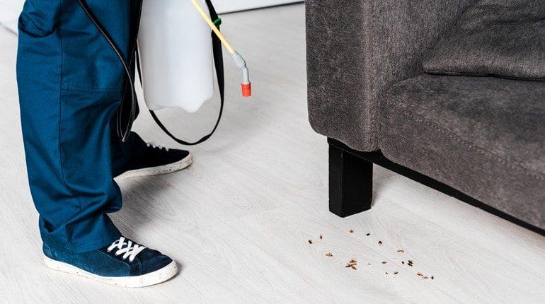 cockroaches hard to kill