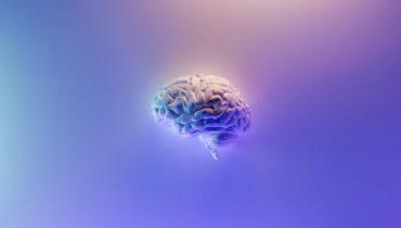 what is brain training
